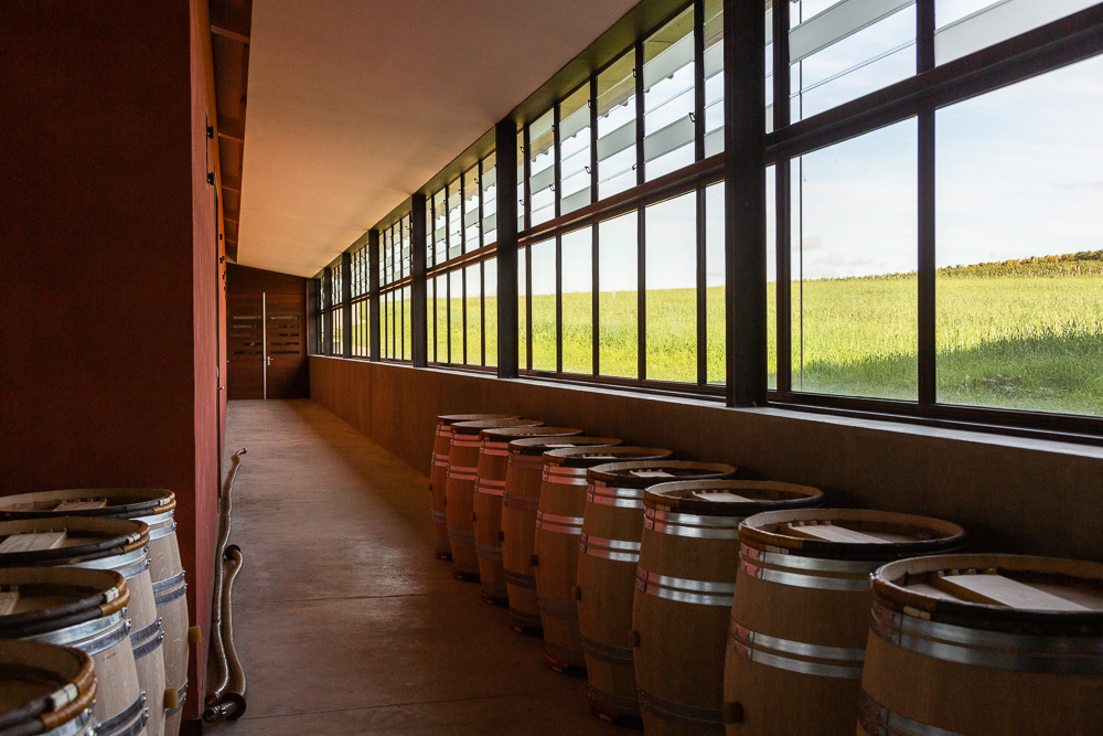 Tasting room in the barrel chai of Château Pavie Macquin, Saint Emilion, Bordeaux region, Department of the Gironde, France.