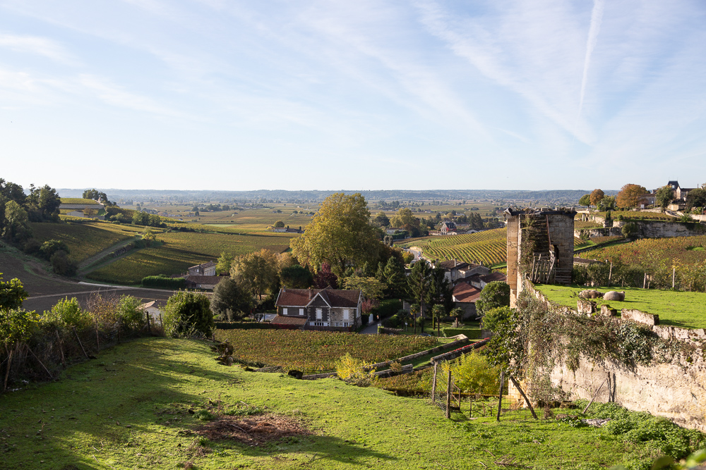 Below the Brunet Gate, the Fongaban Valley hosted in the gardens of Saint-Emilion and many water mills in the Middle Ages, Gironde, France.